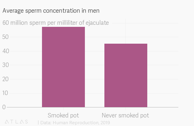 More spunk from your skunk? Marijuana increases sperm count, says Harvard study
