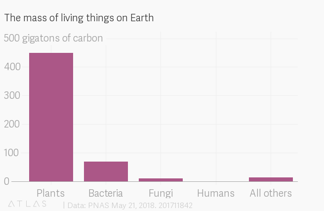 Graph: The mass of living things on Earth. Humans account for just 0.06 of the 550 gigatons of carbon mass on the planet. The majority is made up of plants..